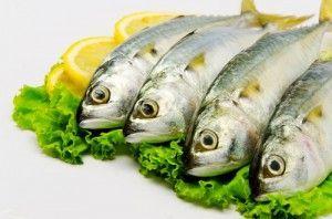 Metales pesados en los pescados y mariscos