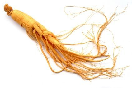 Golden-harvest-single-ginseng-root